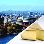 Gratineau, capitale du fromage fondu
